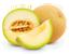 tag Melon icon